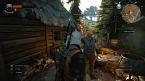 thewitcher3_5