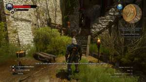 witcher3blood3